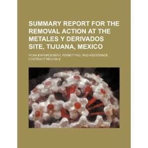 Summary report for the removal action at the Metales y Derivados site