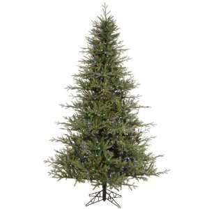 14 x 88 Castlerock Frasier Fir Christmas Tree w/ 5928T 2090 LED