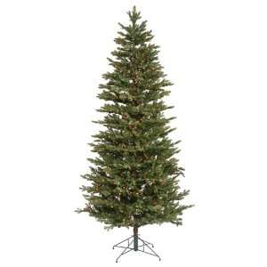 9.5 x 64 Waseca Frasier Fir Christmas Tree W/6964T 1200