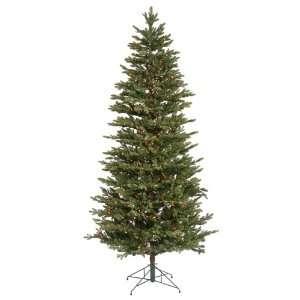 9.5 x 64 Waseca Frasier Fir Christmas Tree W/6964T 1200