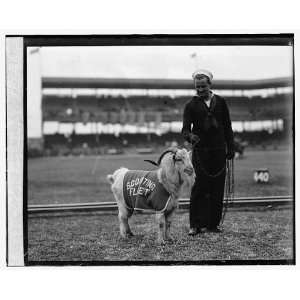 mascot at Scout Fleet vs. Fort Benning, Ga., 11/22/24: Home & Kitchen