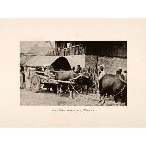 Transportation Ethnic Costume Water Buffalo   Original Halftone Print