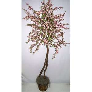 66 Cherry Blossom Tree (Pink)
