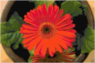 Gerber Daisy Flower Floral Counted Cross Stitch Pattern