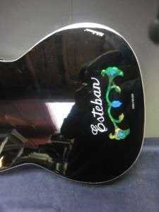 Esteban DUENDE Acoustic Electric GUITAR w/Case, Amplifier, 10 DVDs