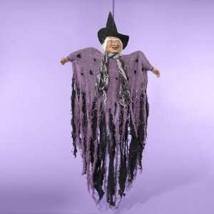 Halloween Hanging Animated Witch with Spooky Sound Home & Kitchen