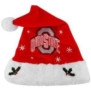 Ohio State Buckeyes 2011 Team Logo Santa Hat Sports
