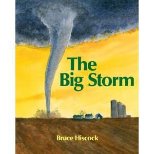 The Big Storm (9781590786000) Bruce Hiscock Books