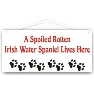 A Spoiled Rotten Irish Water Spaniel Lives Here