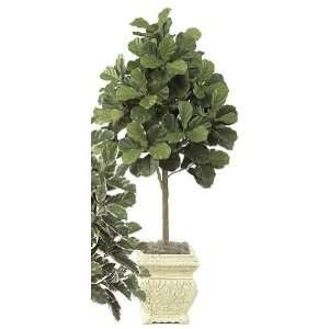 Foliages W 2320   5 Foot Fiddle Leaf Fig Tree   Green: Home & Kitchen