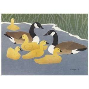 Canada Geese, Note Card, 6.25x4.5 Home & Kitchen