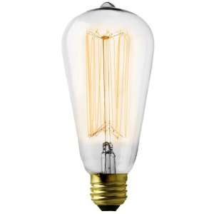 Filament Reproduction Squirrel Cage Light Bulb.