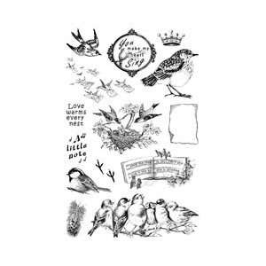 Clear Art Stamps Medium 6X4 Sheet   Bird Notes Arts, Crafts & Sewing