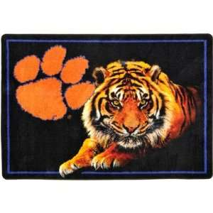 Alabama Crimson Tide Novelty Rug Size 28 x 310, Team Clemson