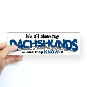 All About My Dachshunds Funny Bumper Sticker by CafePress