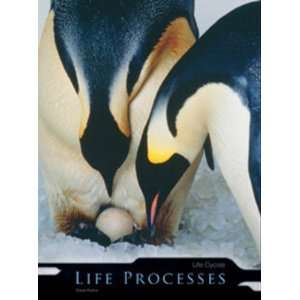 Life Cycles (Life Processes) (9780431174594): Heinemann