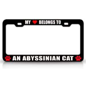 MY HEART BELONGS TO AN ABYSSINIAN Cat Pet Auto License Plate Frame Tag