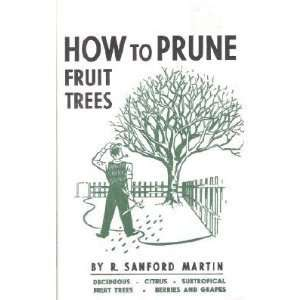 How to Prune Fruit Trees: Deciduous, Citrus, Subropical, Fruit Trees