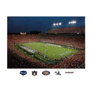 NCAA Auburn Tigers Jordan Hare Stadium Mural Wall Graphic