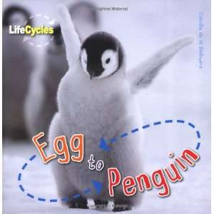 Egg to Penguin (Qed Life Cycles) (9781848355774): Camilla