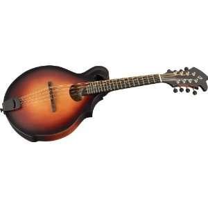 Breedlove American Series Fo Mandolin Sunburst Musical Instruments