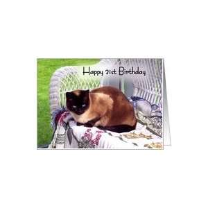 21st Birthday, Siamese cat on white wicker chair Card: Toys & Games