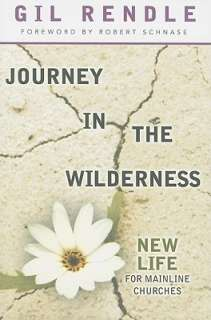 Journey in the Wilderness by Gil Rendle, Robert C. Schnase   Reviews